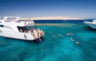 Discover Red Sea Tour