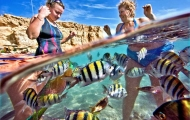 Diving Time,Sharm El Sheikh