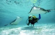 Diving Time,Sharm El Sheikh